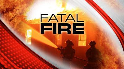 Michigan Fire Service